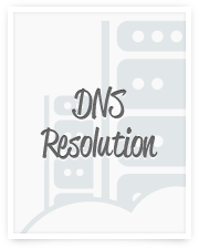 Learn more about the DNS Resolution process.